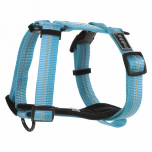 BEAM HARNESS AQUA