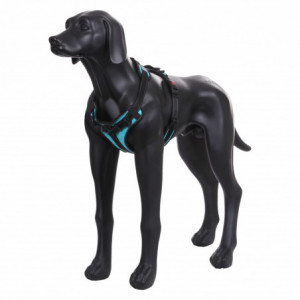 SOLID PADDED HARNESS TURQUOISE