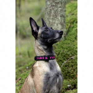 SOLID WEB COLLAR BLACK/PINK