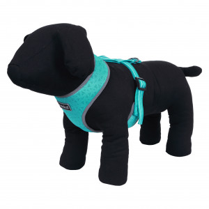 LASER MINI HARNESS TURQUOISE