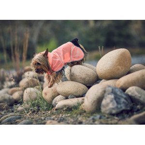 HIKE AIR RAIN JACKET SALMON