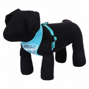 COMFORT FLASH HARNESS TURQUOISE