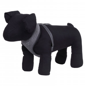 STAR MINI HARNESS BLACK